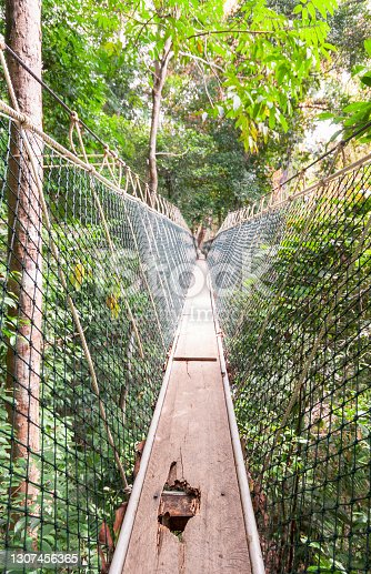 istock Damaged rainforest ropebridge - not for vertigo sufferers 1307456365