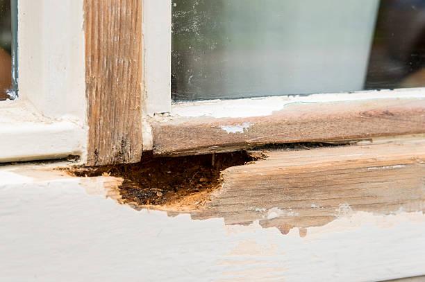 Damaged, Rotting Window stock photo