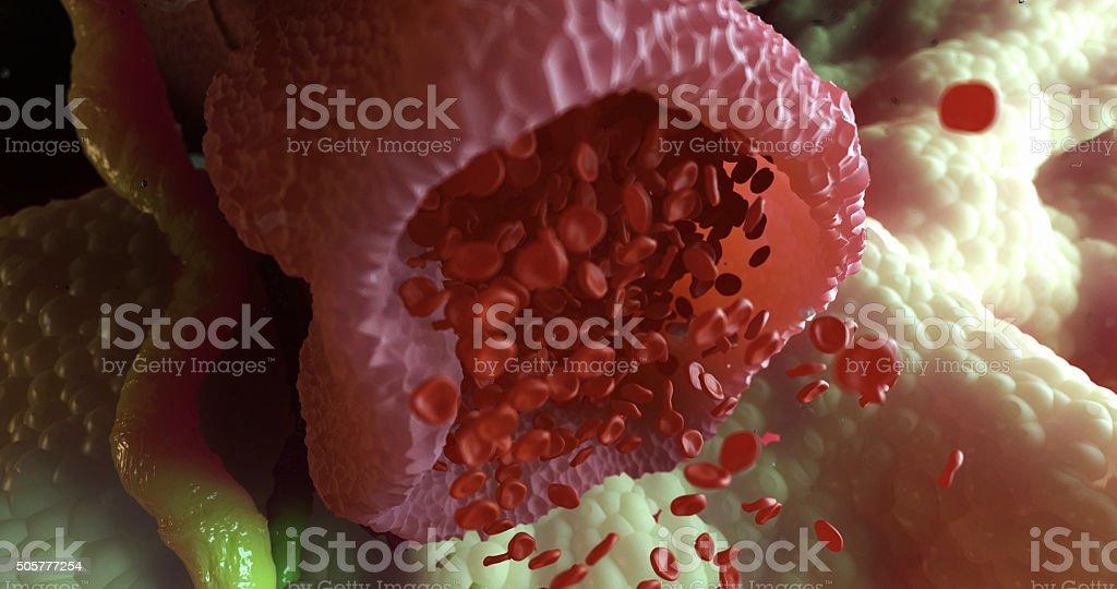 Damaged Vein under Microscope stock photo