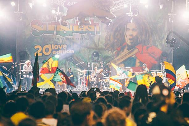 damian marley. - reggae stok fotoğraflar ve resimler