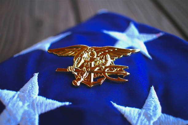 Damn Few Navy SEAL trident rests atop a folded American flag in remembrance of the brotherhood insignia stock pictures, royalty-free photos & images