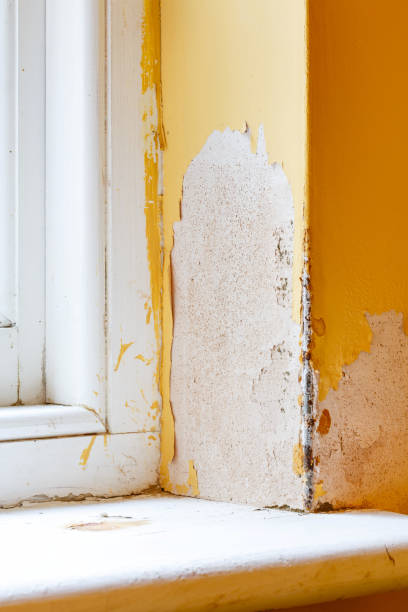 Damp in house wall stock photo