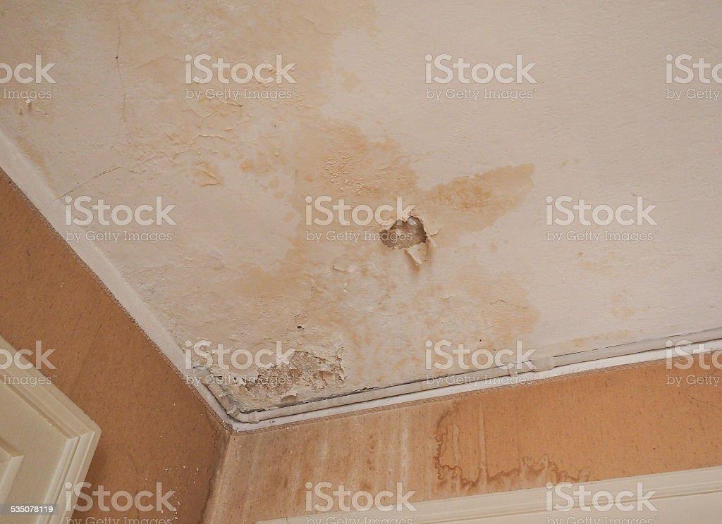 Damp moisture stock photo