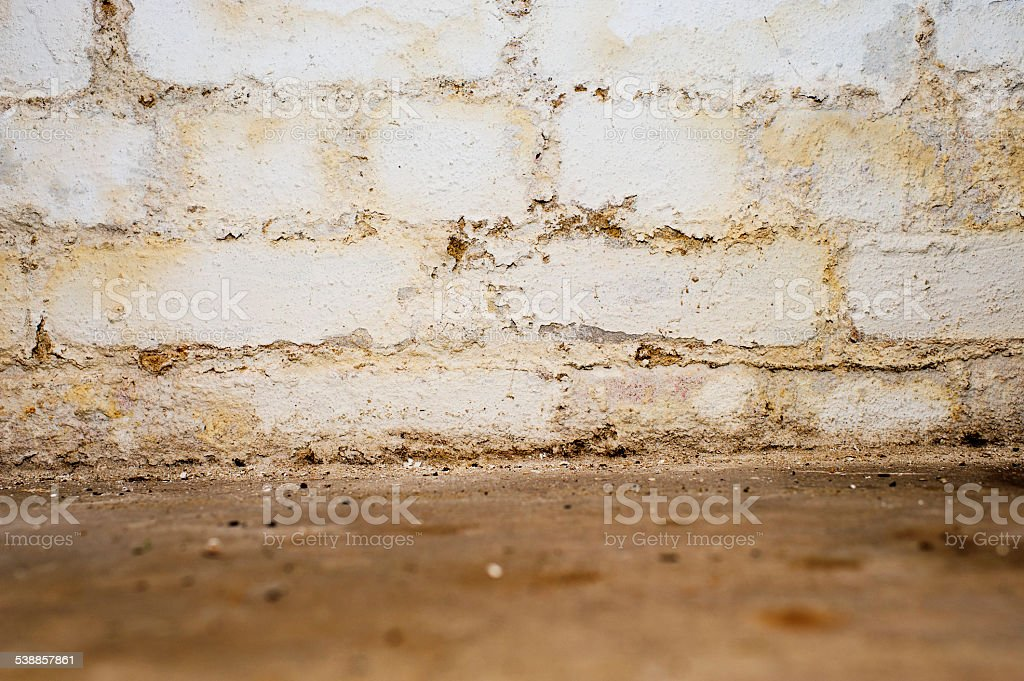 Damp wall in the basement stock photo