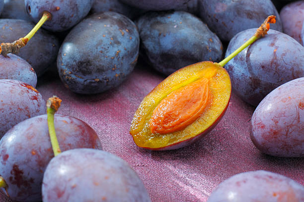 Damson plum (damascene) fruits stock photo
