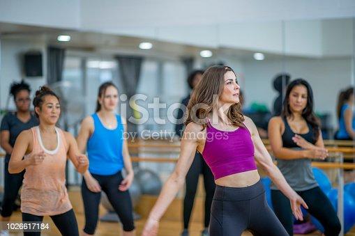 897892972 istock photo Dance Practice 1026617184
