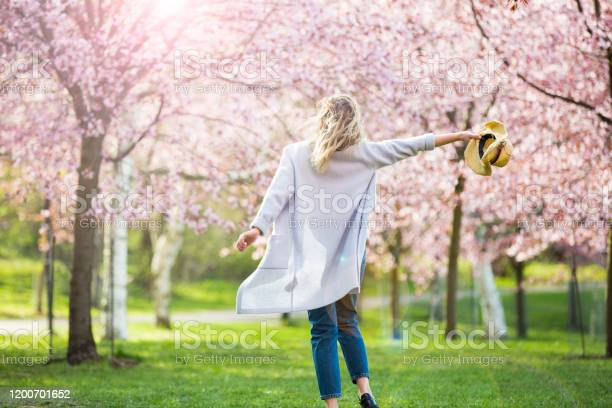 Photo of Dancing, running and whirling in beautiful park with cherry trees in bloom