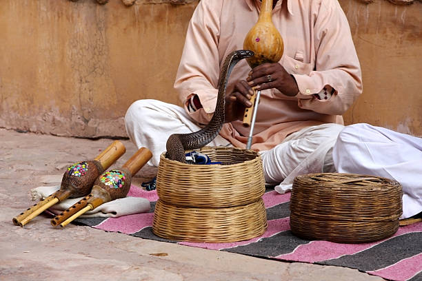 dancing snake - charming stock photos and pictures