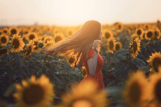 Dancing With Sunflowers Beautiful, young woman in red dress dancing and enjoying in the sunflower field. sun shining through dresses stock pictures, royalty-free photos & images