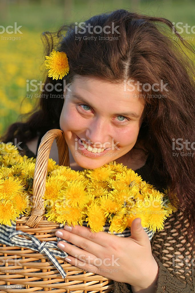 Dandelion basket stock photo