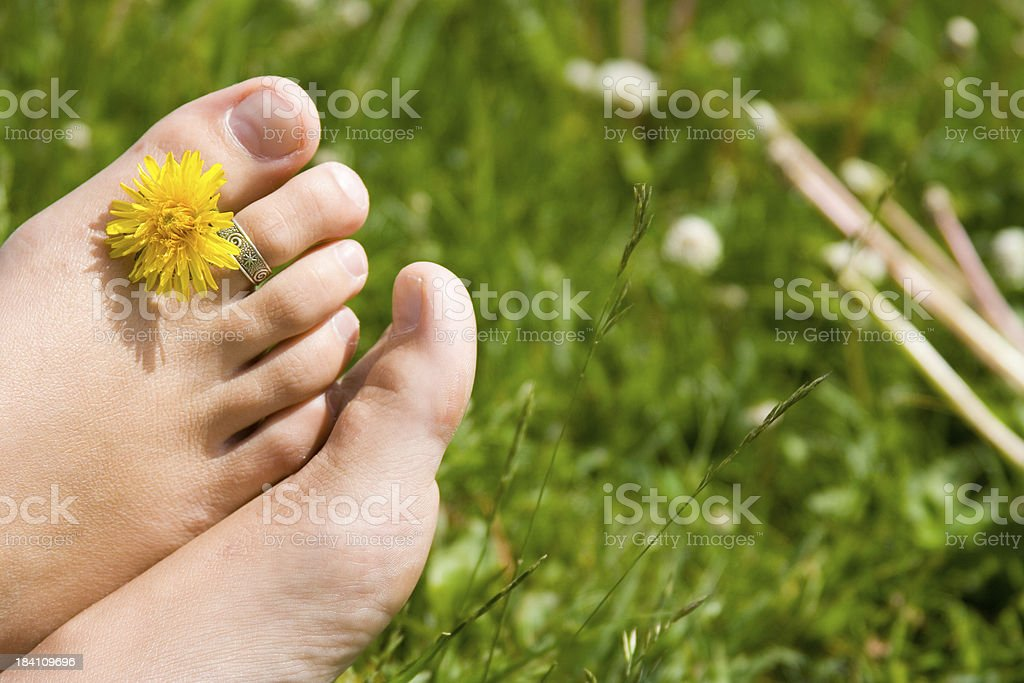 Dandelion Between Toes on Grass royalty-free stock photo