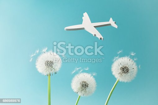 istock Dandelion flowers and white flying airplane silhouette in blue sky. Travel, summer vacation, aviation and air flight concept. 686989976