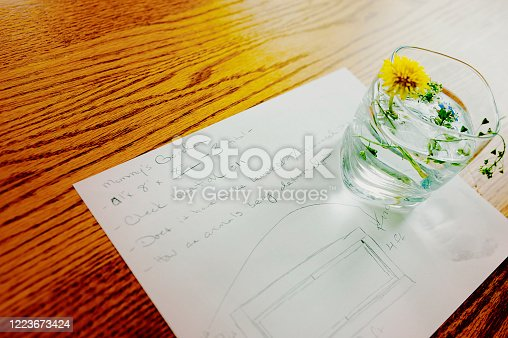 A piece of paper sits on a dining room table. On that paper are plans to build mommy a garden. It has basic measurements, questions about leveling the ground and deterring pests, and a sketch of the size.  A child has decorated those plans with a dandelion in a glass of water.