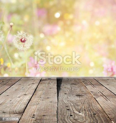 istock Dandelion in spring time 518223508