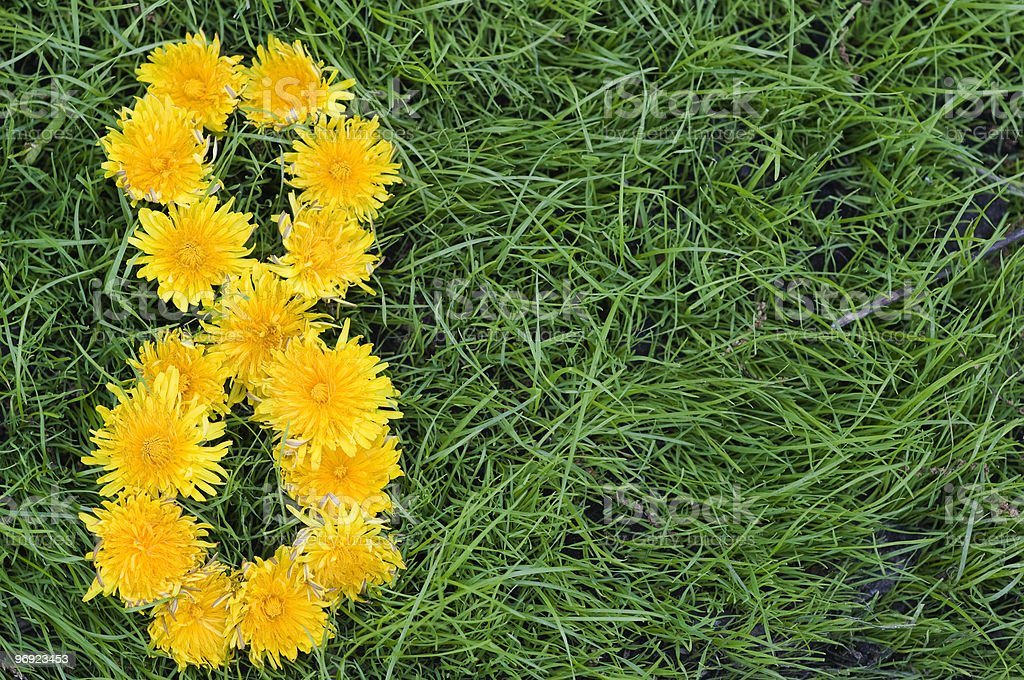 Dandelion number eight royalty-free stock photo