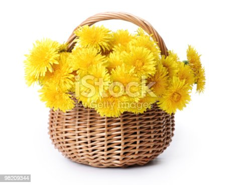 Dandelions In A Basket Stock Photo & More Pictures of Basket
