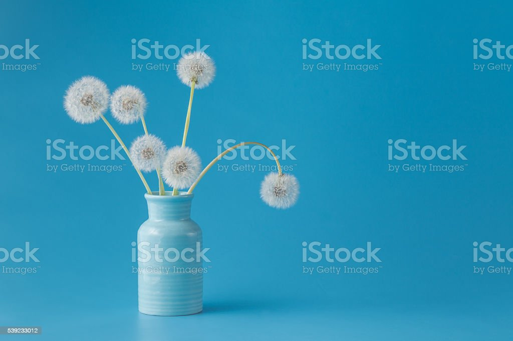 Dandelions on blue background royalty-free stock photo