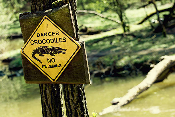 Gefahr Krokodile, keine Swimmingpool – Foto