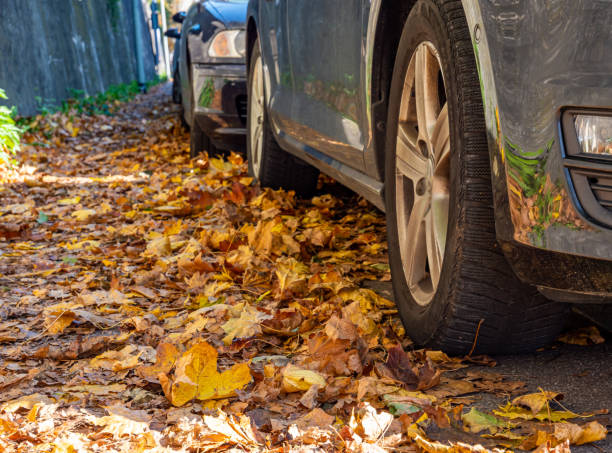 Danger in the autumn on the street Danger in the autumn on the street dazzled stock pictures, royalty-free photos & images