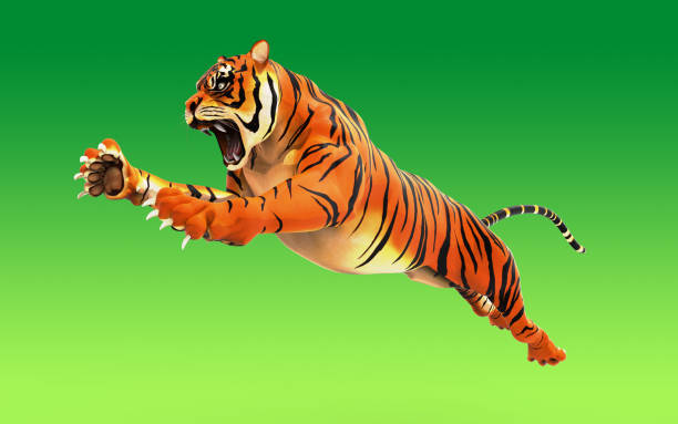 Dangerous bengal tiger roaring and jumping isolated on green picture id886027016?b=1&k=6&m=886027016&s=612x612&w=0&h=eqpd1vh92xzjchfkmokf 0wgkxopdyi5nmgutj9lcjm=