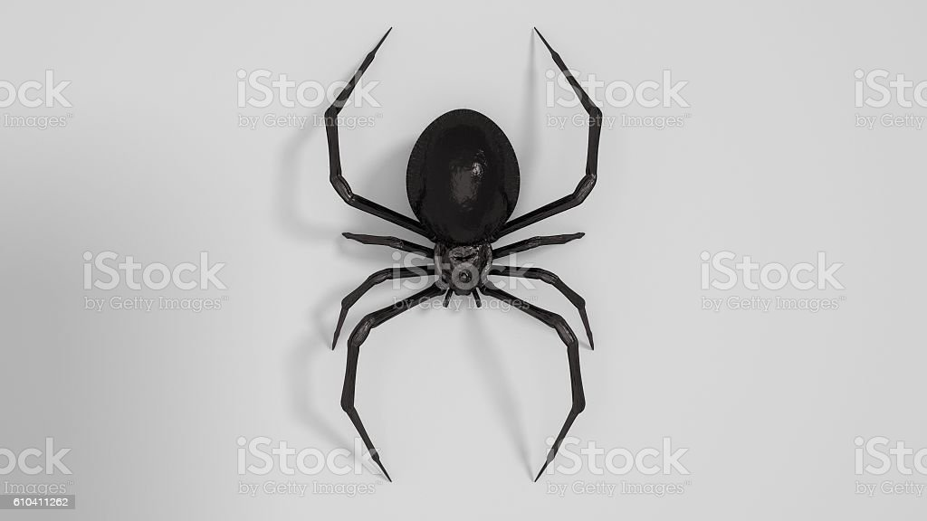 Dangerous Black widow spider 3d render on white background stock photo