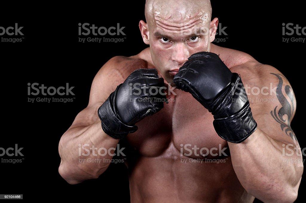 Dangerous fighter portrait royalty-free stock photo