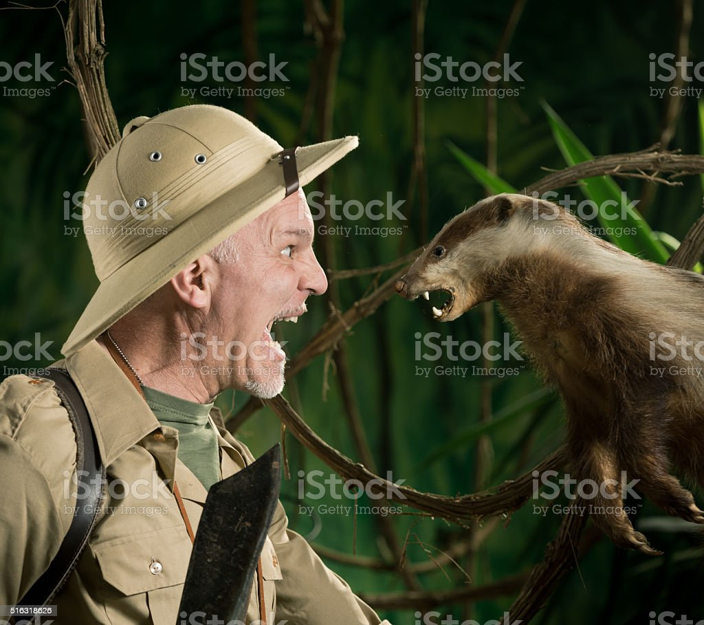 Dangerous meeting in the forest stock photo