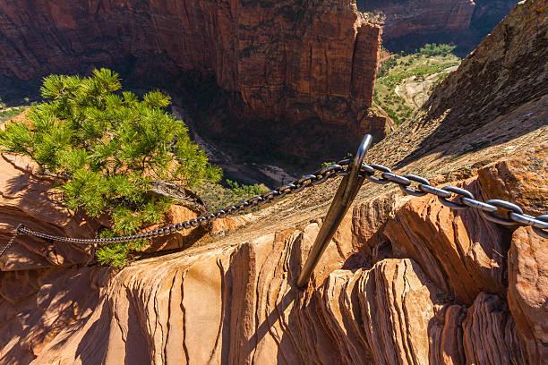 niebezpieczne trail w zion national park, angel s landing - lądować zdjęcia i obrazy z banku zdjęć