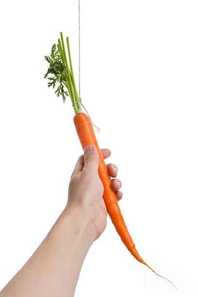Dangling carrot dating internet dating cartoons
