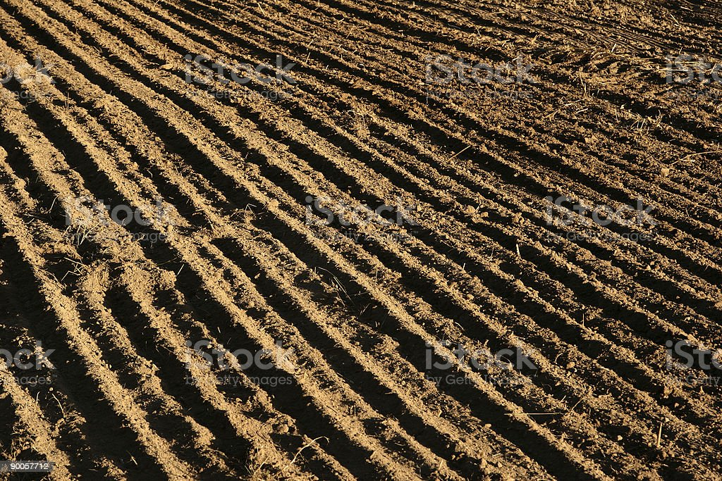 danish landscape01 royalty-free stock photo