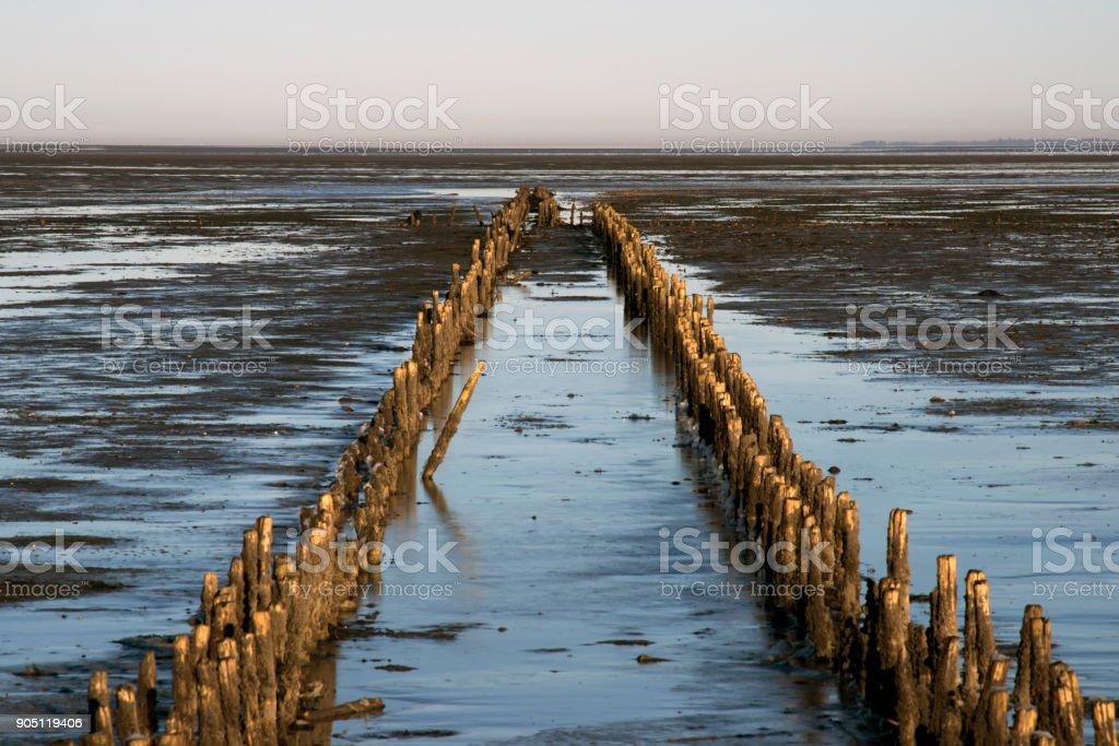 Danish Wadden sea national park stock photo