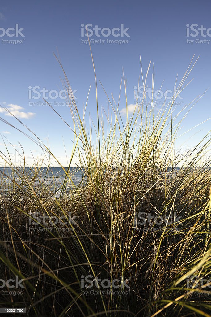 Danish west coast at autumn royalty-free stock photo