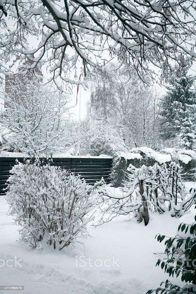 Danish Winter royalty-free stock photo