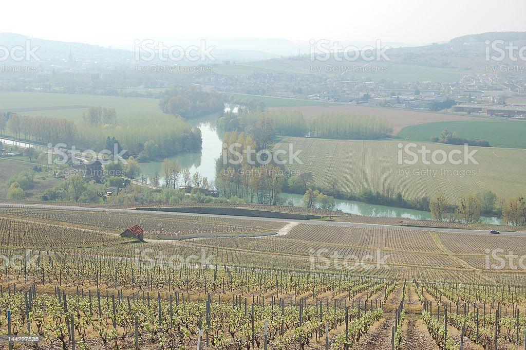 Dans le vignoble champenois royalty-free stock photo