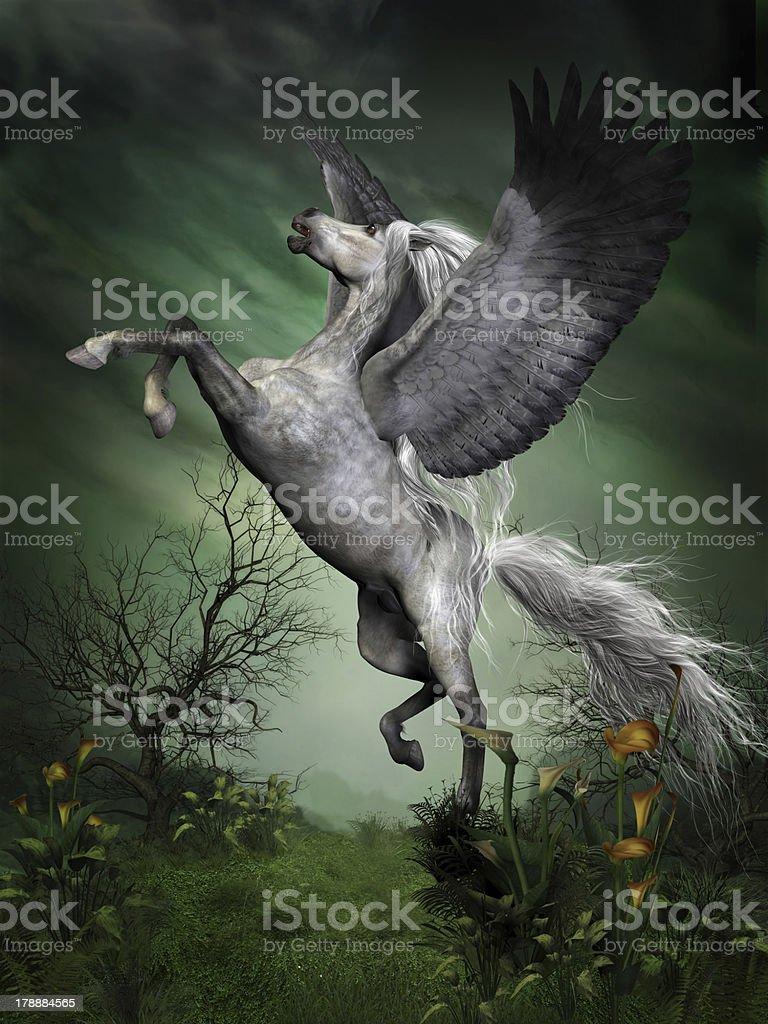 Dapple Grey Pegasus stock photo