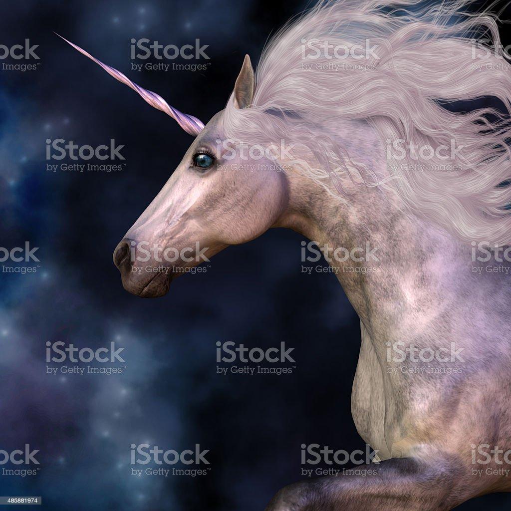 Dapple Grey Unicorn stock photo