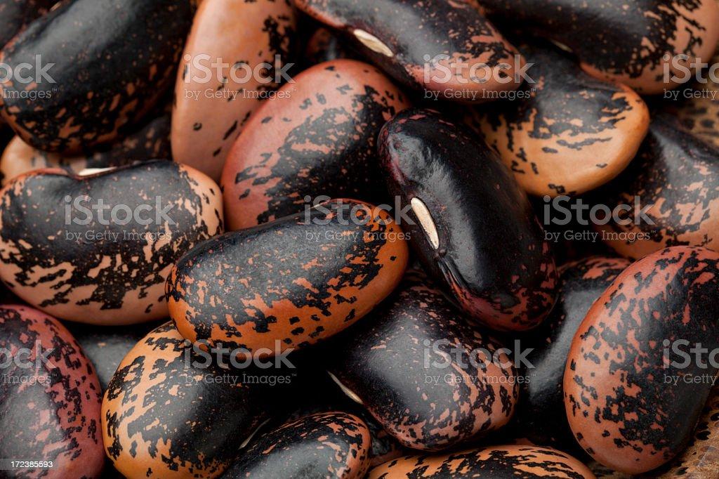 Dappled beans royalty-free stock photo