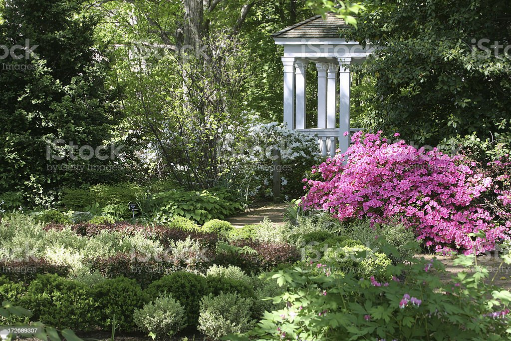dappled garden royalty-free stock photo