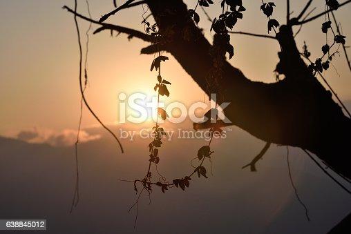 istock Darjeeling at evening 638845012