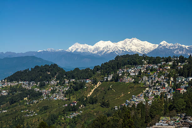 darjeeling stadt und teeplantage mit himalaya-gebirge - darjeeling tee stock-fotos und bilder