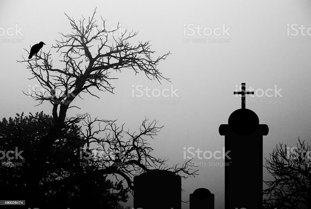 Dark and spooky tree with a crow in a cemetary stock photo