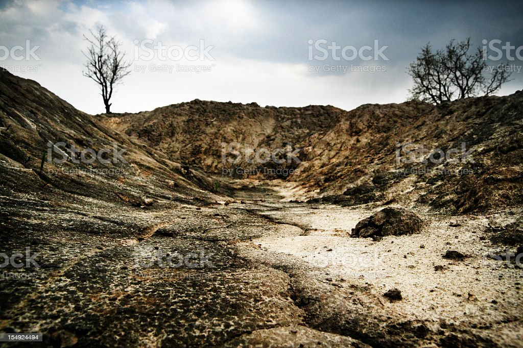Dark, arid landscape with dead trees and dry soil. royalty-free stock photo