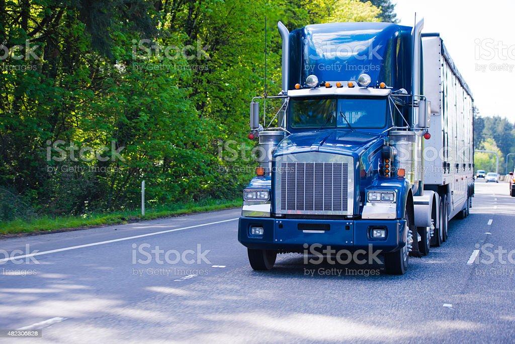 Dark blue classic monster big rig semi truck trailer chrome stock photo