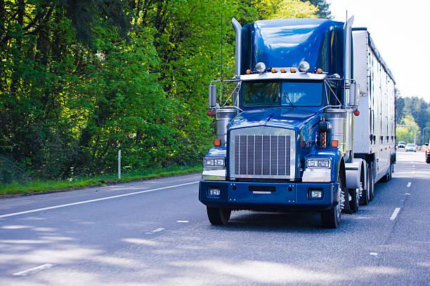 dunkelblaue klassische monster big rig semi truck trailer chrom - aufgemotzte trucks stock-fotos und bilder