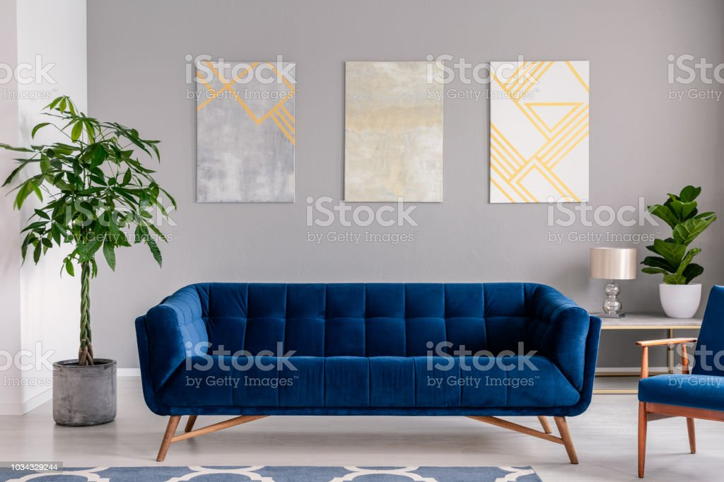 Picture of: A Dark Blue Velvet Couch In Front Of A Gray Wall With Graphic Paintings In A Modern Living Room Interior Real Photo Stock Photo Download Image Now Istock
