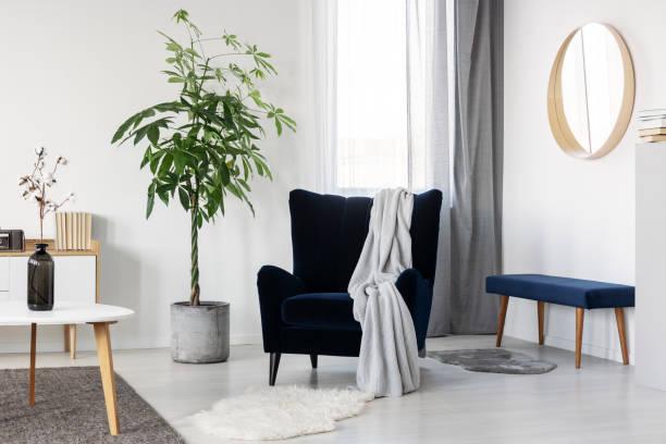 Dark blue velvet wing back chair with grey blanket in trendy living room stock photo