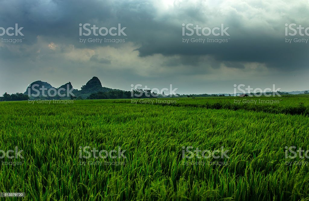 dark clouds and strong winds stock photo
