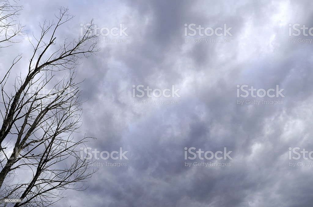 Dark Clouds, Dead Tree royalty-free stock photo