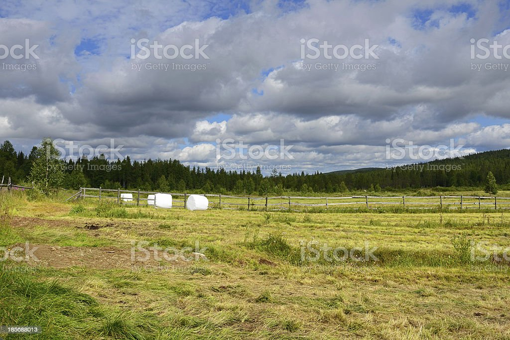 Dark clouds over the field. Rural landscape royalty-free stock photo
