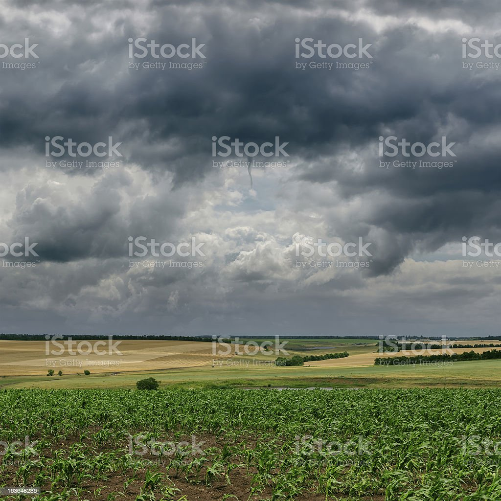 dark cloudy sky and green field royalty-free stock photo